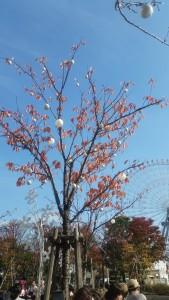 Yokohama Xmas Decorations